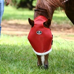 Máscara de Proteção para Cavalos - Boots Horse