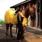 Capa de frio para Cavalo Vermelha Boots Horse