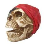 Crânio Pirata