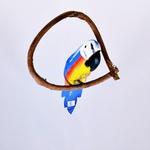 Arara Azul PP