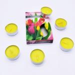 Vela Tulipa