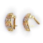 Brinco de Ouro 3 cores Aparatus