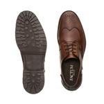 Sapato Casual Masculino ZEUS Conhaque
