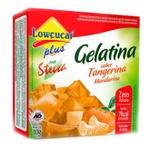 Gelatina Tangerina Com Stevia 10g