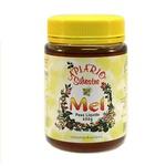 Mel Puro Silvestre 450g