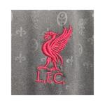 Camisa Liverpool Pré Jogo 20/21 TORCEDOR