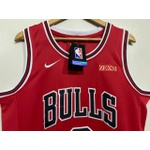 Regata Chicago Bulls Bordada ( Torcedor) Lavine Camisa 8