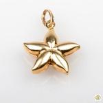 Pingente 18k Estrela do Mar Polida