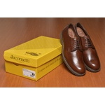Sapato Casual Masculino Derby Chocolate Bro004