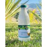 Iogurte Natural 1L