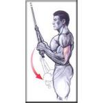 Puxador Triceps Corda Profissional Academia / Musculação