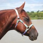 Cabresto para Cavalo Nylon Estampado Boots Horse 3903