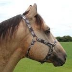 Cabresto para Cavalo Nylon Estampado Boots Horse 3904