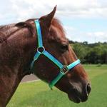 Cabresto para Cavalo Nylon Estampado Boots Horse 3906