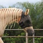 Máscara de Proteção para Cavalos Boots Horse Preta 4890