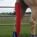 Saco para Rabo Várias Cores Boots Horse 5512