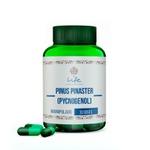 Pinus Pinaster (pycnogenol) 150mg - 30 Doses