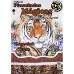 DVD Coleção Pinceladas Mágicas Edição 8 Tigre com Apostila
