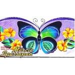 Foto e Risco Flores 0280