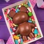 Ursinho BWB CÓD:9910 Forma De Chocolate Acetato com Silicone Especial (3 Partes)