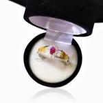 Anel de Formatura Feminino em Prata 950 Símbolos Ouro 18k P150F