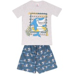 Conjunto Infantil Menino Camiseta Cinza Tubarão Surfista e Short
