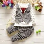 Conjunto Boy Gray