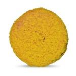 Boina Dupla Face Macia (amarela) - Ø 200mm - 17