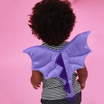 asa dragão baby lilás