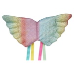 Asa unicórnio Rainbow