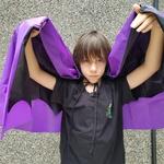 Capa vampiro Roxo e preto