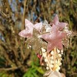 Varinha estrela rosa