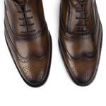 Sapato Brogue Masculino Pierre II Damasco