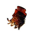 Prendedor Mini 2,5x2,0cm Tartaruga de Acetato Musa Kalliopi