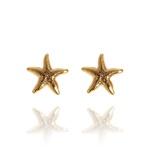 Brinco Pequena Estrela Do Mar Semijoia Banho De Ouro 18k