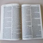 BÍBLIA SAGRADA NVI BÁSICA
