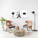 Kit Quadros Decorativos Rosa Paris