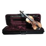 Violino Michael Envelhecido Profissional