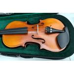 Violino 3/4 Hoyden