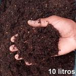 10 LITROS SUBSTRATO SEMEADURA ROSA DO DESERTO