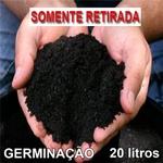 20 LITROS SUBSTRATO SEMEADURA ROSA DO DESERTO