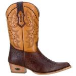 Bota Texana Western De Bico Fino Masculina em Couro