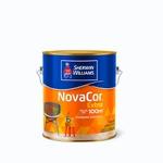 NOVACOR ACR EXTRA MAIS RENDIMENTO ACETINADO BRANCO 3,6L