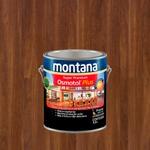 MONTANA OSMOTOL PLUS ACETINADO IPE 3,6L
