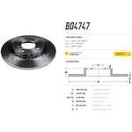 Par de disco de freio traseiro Citroen Xsara, Xsara Picasso, ZX, 206, 207, 306. Disco solido diametro 247mm e 04 furos