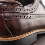 Sapato Masculino Derby Brogue Faway Mood Harken Café