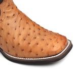 Bota Masculina - Avestruz Original Conhaque | Fóssil Castanho - Vimar Boots - 81298-A-VR