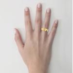 Alianças em Ouro 18k amarelo (5.70 mm de largura)