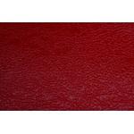 Verniz Molhado Vermelho (p/m/g)