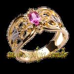 anel de formatura ouro amarelo 18K 750-ASP-AF-1142